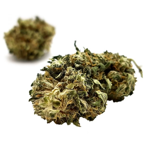 dispensr-cbd-flower-siesta-sidewinder-2